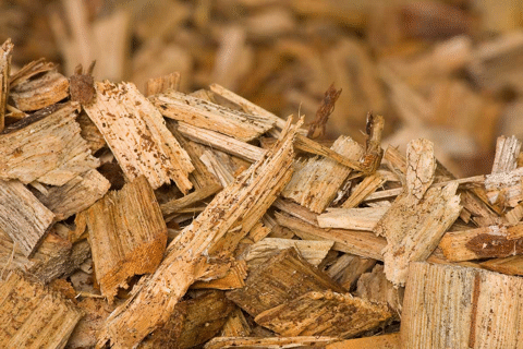 POLYTECHNIK energy from biomass