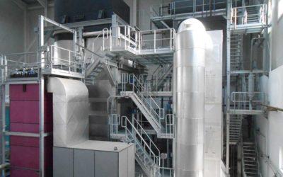 RIG-Biomass